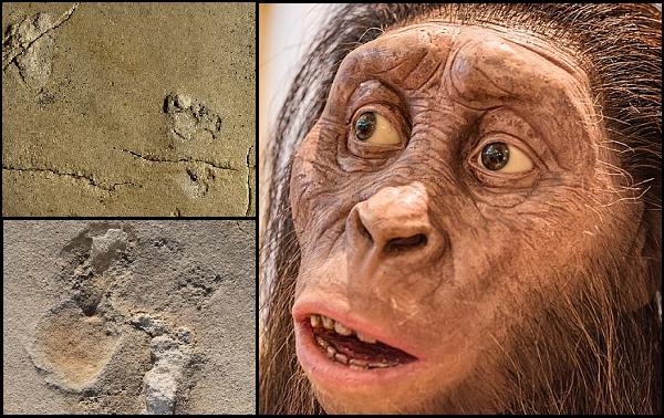 Girit Adasında Keşfedilen Ayak İzleri 6 Milyon Yıllık İnsan Öncesi Bir Türe Ait Çıktı